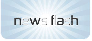 Newsflash Logo